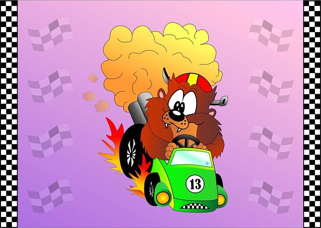medvěd v autě