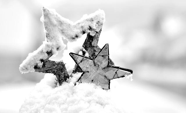 hvězdy ve sněhu